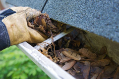 gutter cleaning mount vernon
